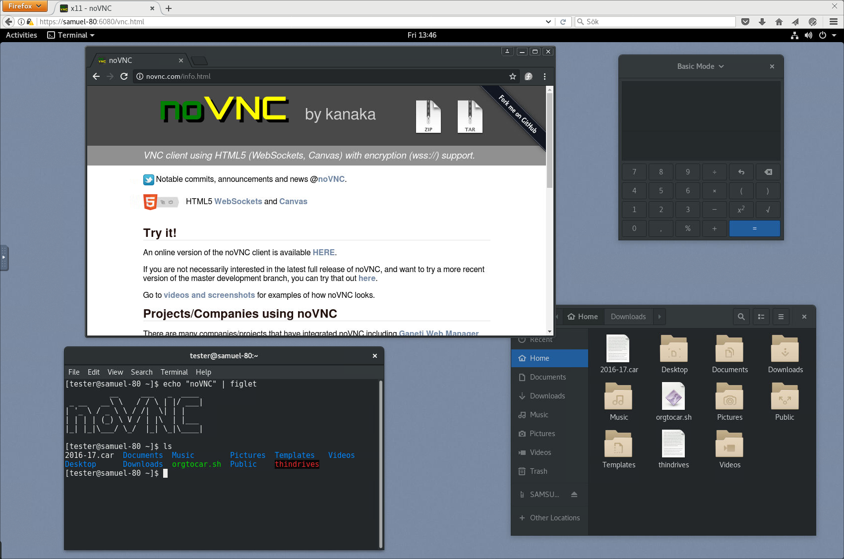 Add X server and VNC web client to the image (64849ee7