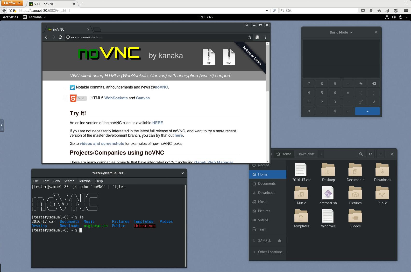 noVNC Videos and Screenshots